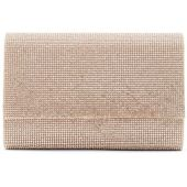 ALDO Imnaha Evening Bag